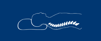 back sleeper's spine position on Ecosa pillow